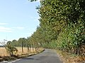 Twinney Lane, Upchurch - geograph.org.uk - 1477148.jpg