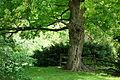 Tyler Arboretum - DSC01904.JPG