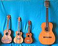 Ukulelen + Gitarre.jpg