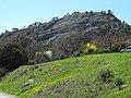 Une colline à Aubignosc.JPG