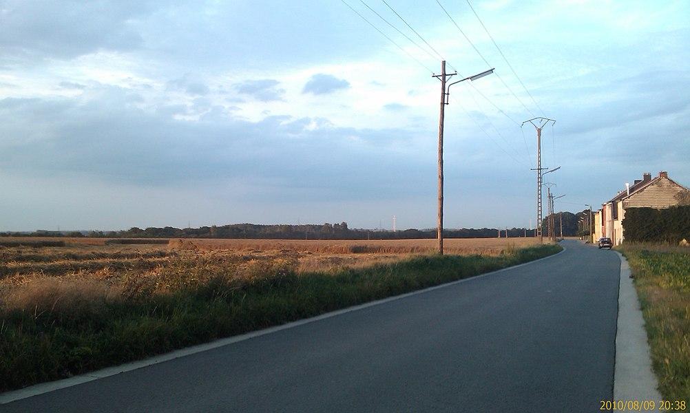 Une route entre les champs