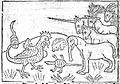 Unicorns etc. Wellcome L0000929.jpg