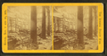 Unidentified view of ruins from the Summer Street fire, Boston, Nov. 9 and 10, 1872, from Robert N. Dennis collection of stereoscopic views.png