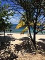 Unnamed Road, British Virgin Islands - panoramio (226).jpg