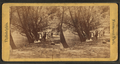 Up the Wissahickon, from Robert N. Dennis collection of stereoscopic views 2.png