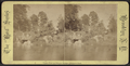 Upper pool and rustic bridge, Prospect Park, from Robert N. Dennis collection of stereoscopic views.png