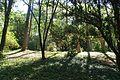 VIEW , ®'s - DigiGraf - Ð - ┼ , MADRID JARDIN-PARQUE CAMPO del MORO - panoramio (3).jpg