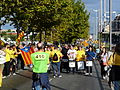 Via Catalana - després de la Via P1200474.jpg