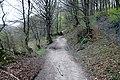 Via degli Dei, Firenzuola, fra la Piana degli Ossi e il lago del Passeggere 01.jpg