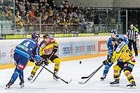 Vienna Capitals vs Fehervar AV19 -89.jpg