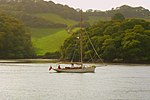 View across the River Dart from Greenway's boathouse.jpg