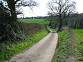 View along Church Lane, Stelling MInnis - geograph.org.uk - 1244549.jpg