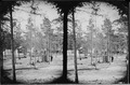 View in Grove, Sanitary Commission Headquarters - NARA - 527525.tif
