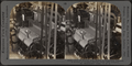 View of electric stop motion, a mechanism enabling a weaver to produce perfect cloth. Silk industry, South Manchester, Conn., U.S.A, by Keystone View Company.png