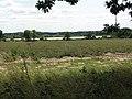 View towards Hardley Flood - geograph.org.uk - 1425482.jpg
