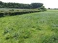 View towards Innox Wood - geograph.org.uk - 457842.jpg