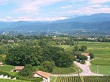 Les vignobles de Savoie dans la combe de Savoie au pied du massif de Belledonne