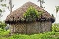 Village hut (48869721496).jpg