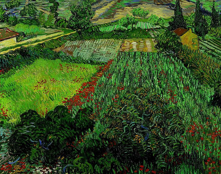 File:Vincent van Gogh - Field with Poppies (1889).jpg