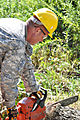 Virginia National Guard soldiers clear fallen trees 110828-A--486.jpg