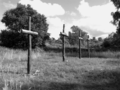 Vlakte van Waalsdorp (Waalsdorpervlakte) 2016-08-10 img. 222 GRAYSCALE.png