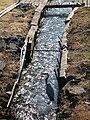 Wading heron 2.jpg