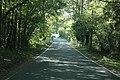Wainsford Road, Upper Pennington - geograph.org.uk - 253109.jpg