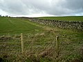 Wall on Hempland Hill - geograph.org.uk - 354775.jpg