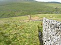 Wall running down from Whernside - geograph.org.uk - 431113.jpg