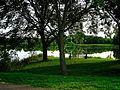 Warner Park Lagoon Seen though the Trees - panoramio.jpg