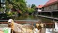 Wat Phra Sing - pond - P 20180215 115754.jpg