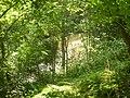 Waterdawn Great Falls3.jpg
