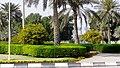 West bay chorniche, Doha, Qatar - panoramio (19).jpg