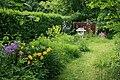 Wild garden3.jpg