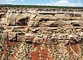 Wingate Sandstone (Lower Jurassic; Cold Shivers Point, Columbus Canyon, Colorado National Monument, Colorado, USA) 6 (23976979685).jpg