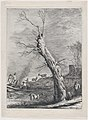 Winter, after a drawing completed in Saint-Chamond MET DP874567.jpg