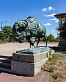 World's Fair Bison Prairie King Humboldt Park Chicago 2020-0648.jpg