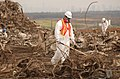 World Trade Center wreckage-Fresh Kills landfill on Staten Island.jpg