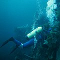 Wreck Diving, Conception Bay, Newfoundland (36793271112).jpg
