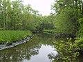 Wright Creek from Nanticoke Wildlife Area.jpg