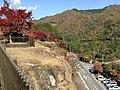 Yabakeimachi Oaza Oshima, Nakatsu, Oita Prefecture 871-0431, Japan - panoramio (4).jpg