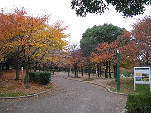 Yahataya Park - Image: Yahataya park