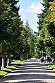 Zürich - Friedhof Sihlfeld IMG 2473.JPG
