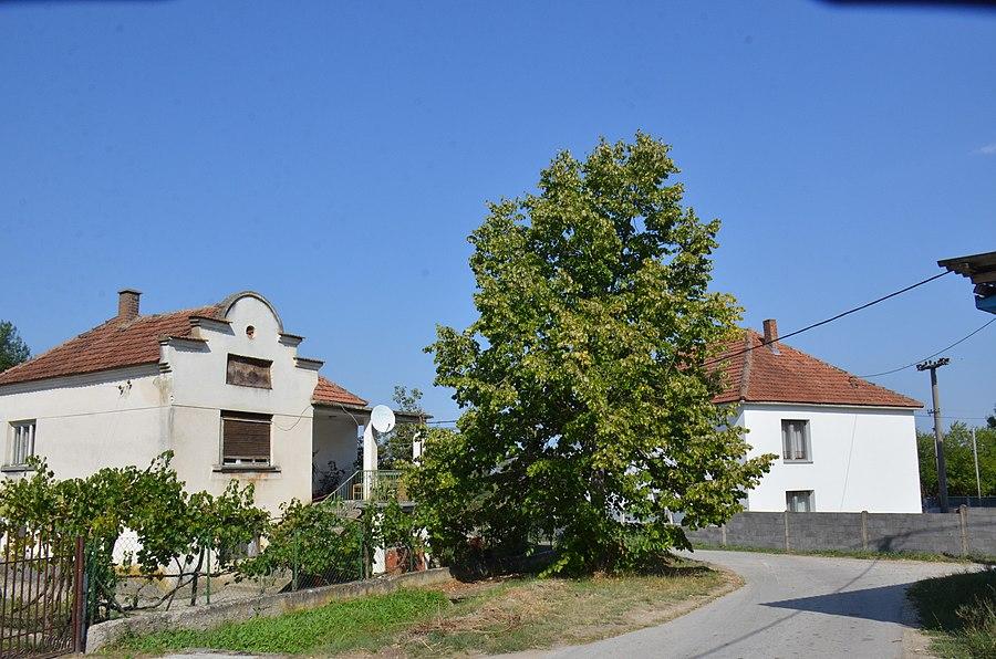 Ribnik, Bosnia and Herzegovina