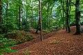 Zeist - park - autumn 2018 (31536698978).jpg