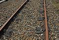 Zigzag spoor.JPG