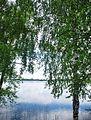 Zosnas ezers.jpg
