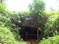 (lava tunnel (b1) El Chato Reserve, Santa Cruz Highlands, Galápagos.JPG