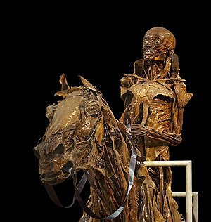 Musée Fragonard d'Alfort - Écorché of a horse and his rider by anatomist Honoré Fragonard, two of the cadavers on display at the museum