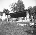 """Čebelnjak (""""pšenik"""") - ostanek prejšnjega pšenika, ki je bil porušen v zadnji vojni, Svino 1951.jpg"""